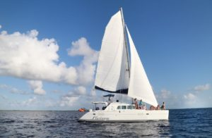 Luxury Catamaran at Cozumel for day trip